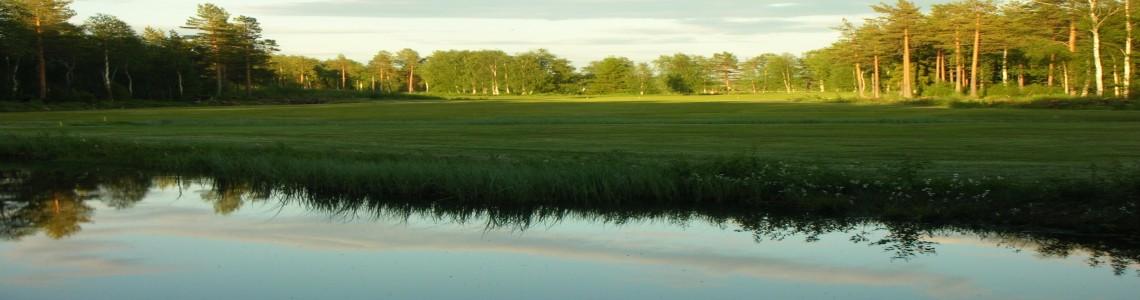 Golfbanan 2009 TB 021resized300