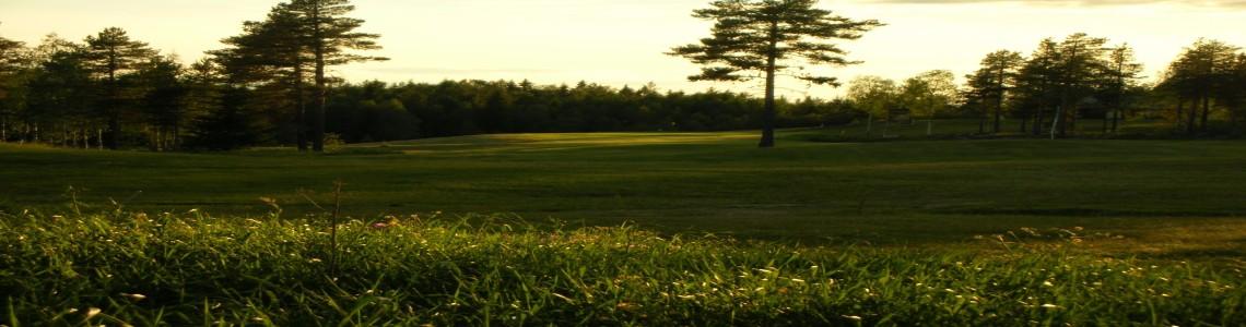 Golfbanan 2009 TB 028resized300