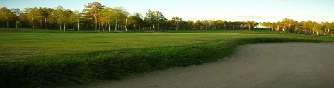 Golfbanan 2009 TB 032resized