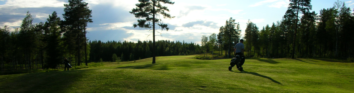 golfare1resized300