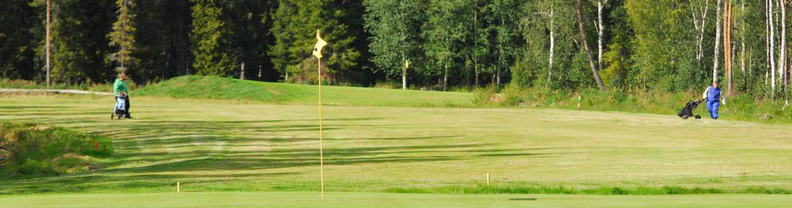 golfare2resized300
